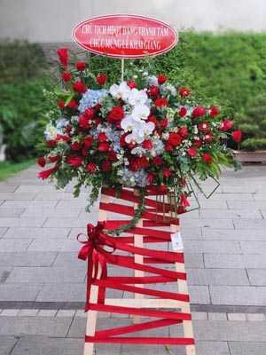 Lãng hoa hồng đẹp
